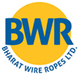 Bharat Wire